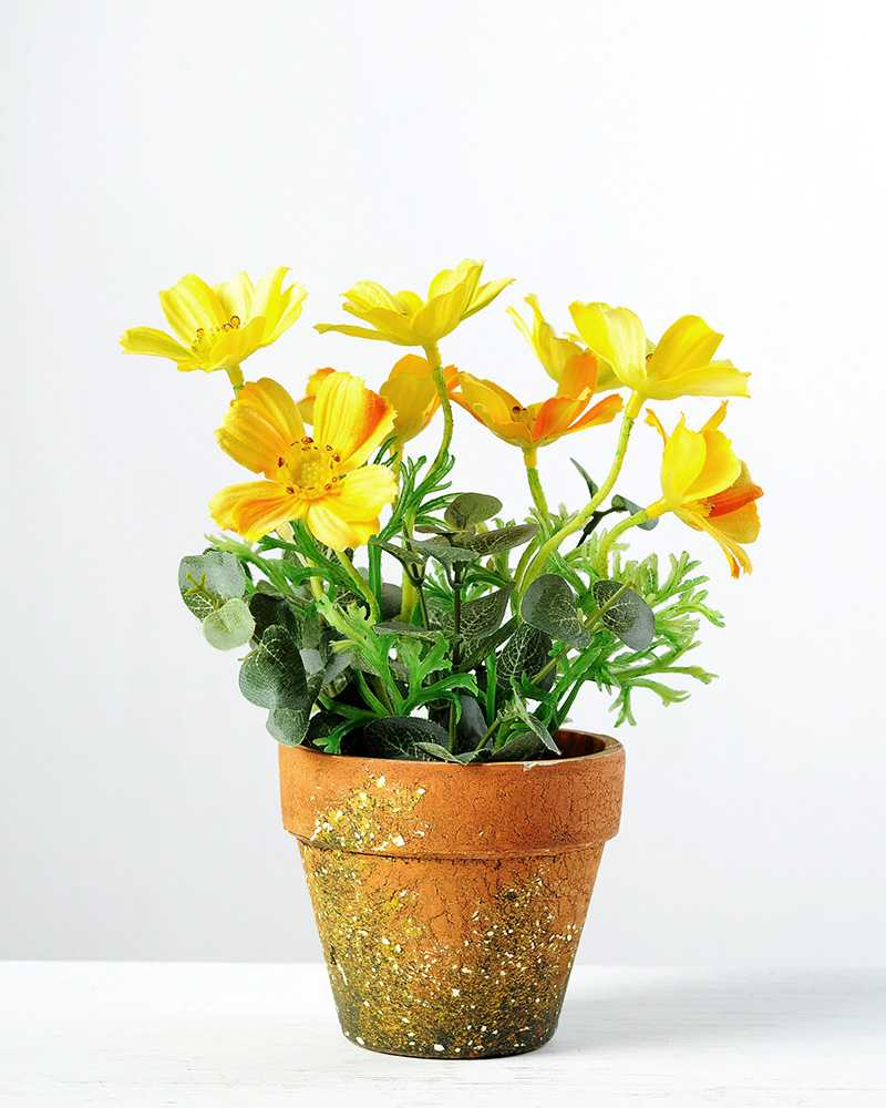 20cm Coreopsis Silk Flower In Paper Pulp Pot Artificial Flowers