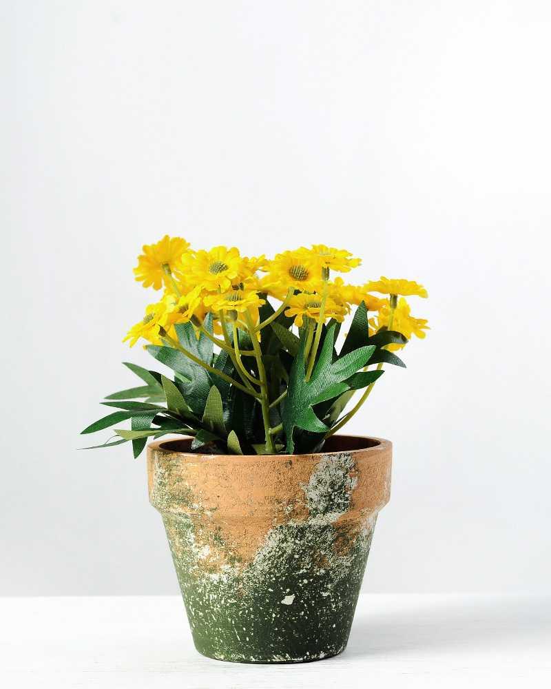 14cm daisy silk flower in paper pulp pot artificial flowers 14cm daisy silk flower in paper pulp pot mightylinksfo