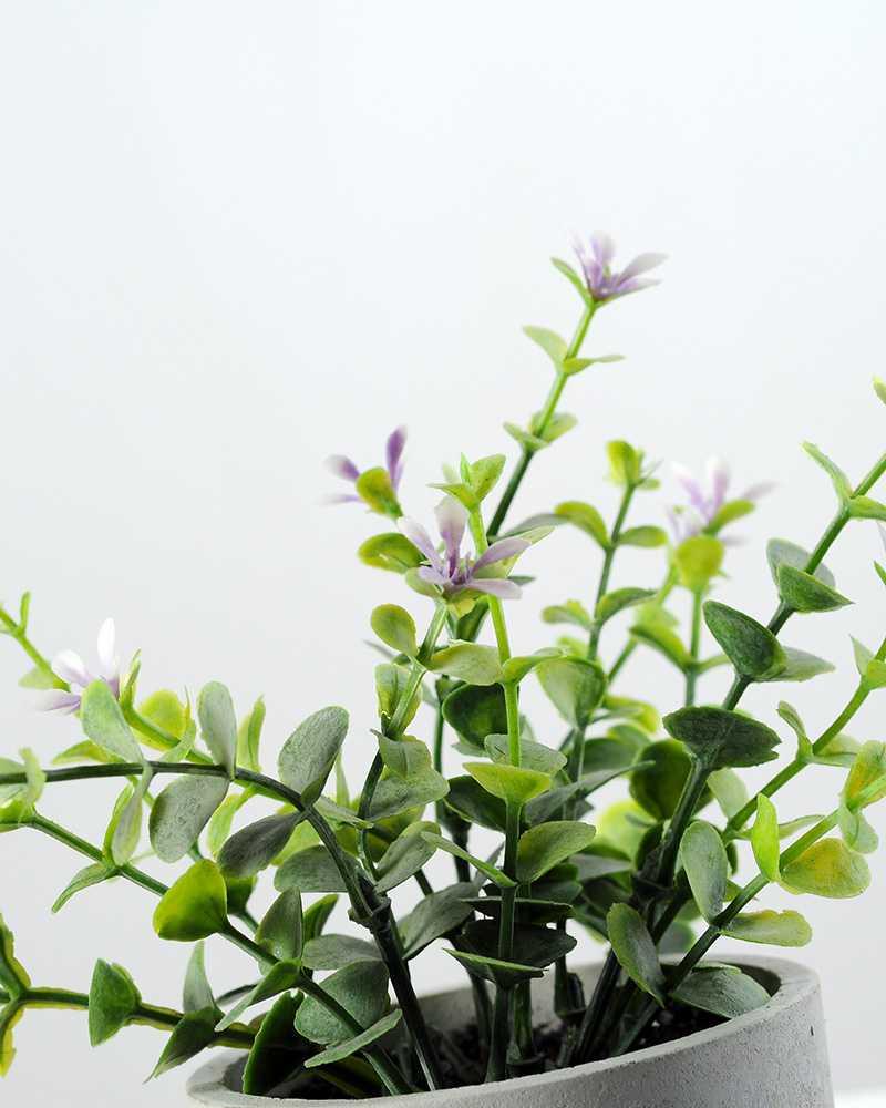 Creative Displays Eucalyptus Silk Flower In Paper Pulp Pot