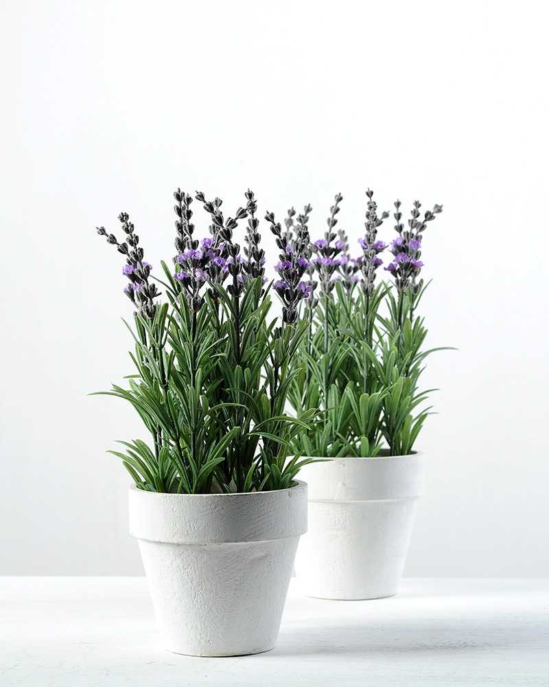 25cm Lavender Silk Flower In Paper Pulp Pot Artificial Flowers