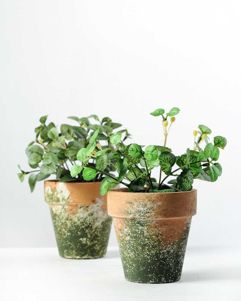 Potted Plants And The Necessary Spring Care: 15cm Mini Leaves Artificial Plant In Paper Pulp Pot