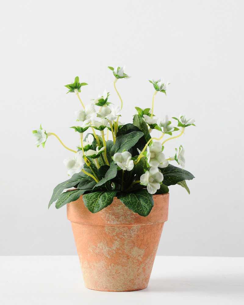 20cm Mini Silk Wild Flower Silk Flower In Paper Pulp Pot