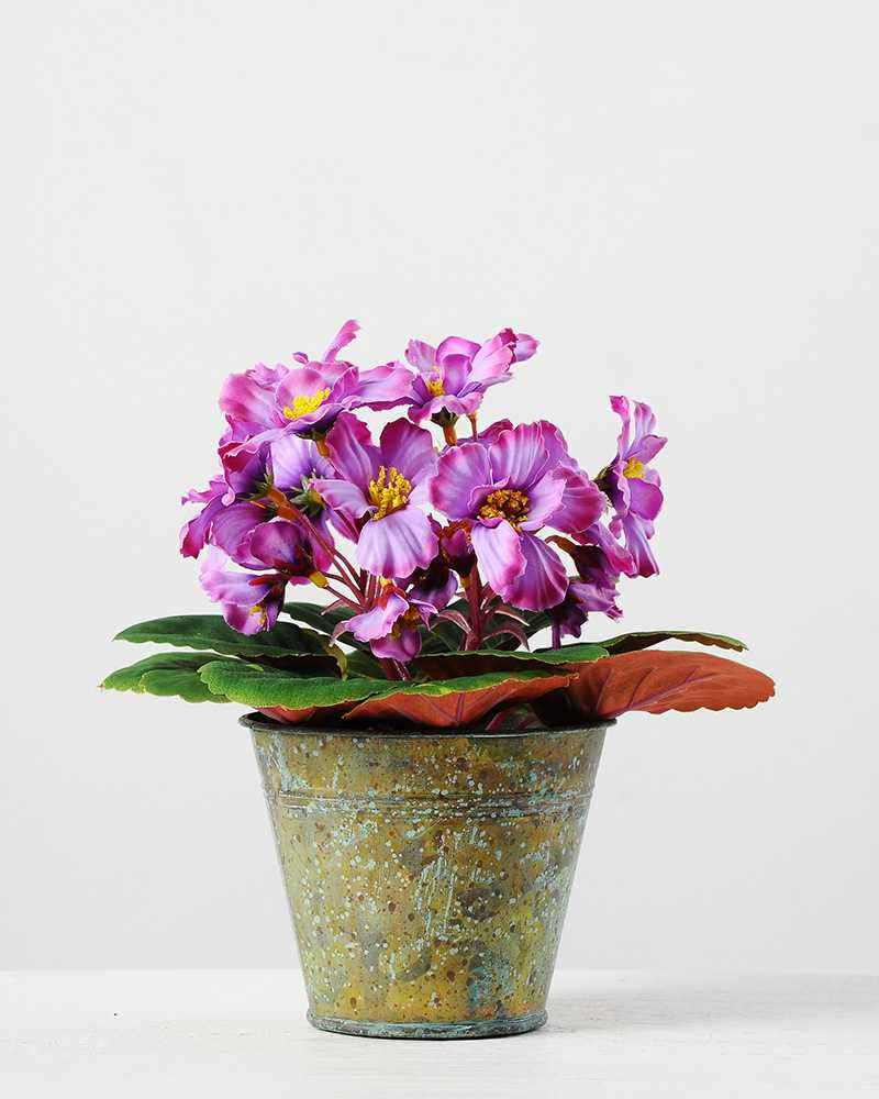 19cm violet silk flower in metal pot artificial flowers factory 19cm violet silk flower in metal pot mightylinksfo