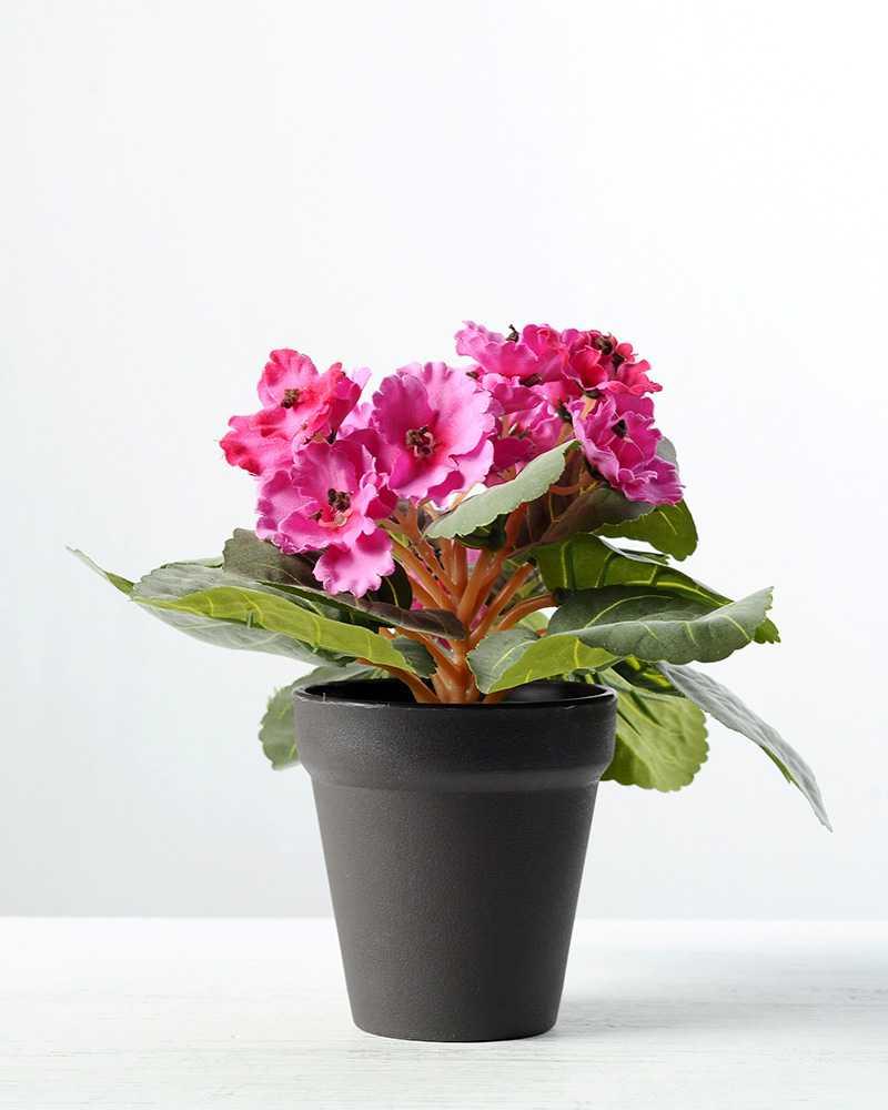 16cm violet silk flower in plastic pot artificial flowers factory 16cm violet silk flower in plastic pot mightylinksfo