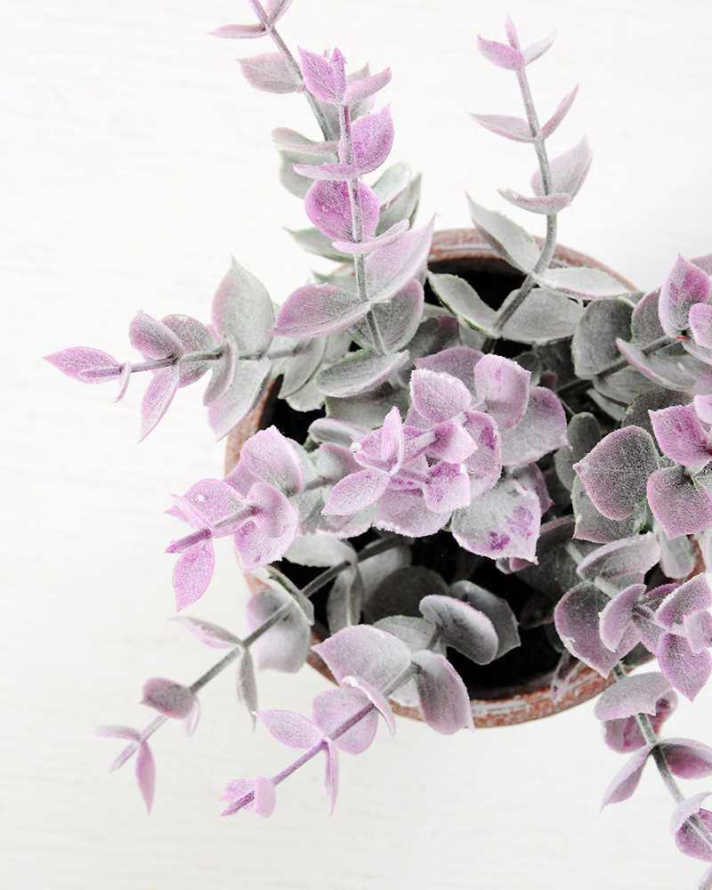 18cm Eucalyptus In Paper Pulp Pot Gs 0339709 Artificial