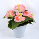 Artificial Flower 22*22*23cm Begonia in Paper pot GS-03319015-P1