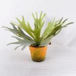 Artificial Plant 28CM Artificial succulent in Paper pulp pot GS-6660706