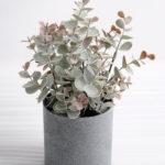 Artificial Plant 16*16*25cm Eucalyptus in plastic pot GS-03318170-G1