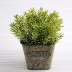 Artificial Plant 13*13*14.5cm Grass in Metal pot GS-03318193