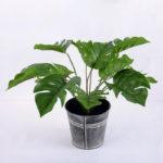 Artificial Plant 30*30*30cm Monstera in Metal pot  GS-66618003