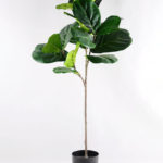 Artificial Tree 105CM FicusTree GF-14518010