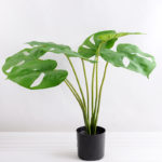 Artificial Tree 48CM MONSTERA TREE GF-25818004