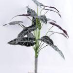 Artificial Plant 48*42*42cm Alocasia leaves bush GS-52319001-G2