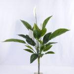 Artificial Tree 58*56*72cm Taro leaves bush GS-07919020