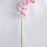 Artificial Flower 34*34*73CM Feeling butterfly orchid*3 GS-31319002-Z4