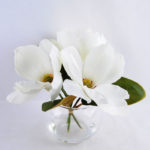 Artificial Flower 29*29*23CM Magnolia*3 in glass pot with fake water GS-52719012