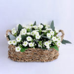 Artificial Flower 20*13*12.5cm Milan in Basket GS-03319057-W1