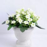 Artificial Flower 14*14*16.5cm Milan in  Paper pot GS-03319119-W1