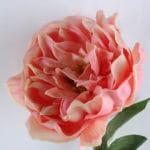 Artificial Flower 15*74CM single peony GS-4280045-P3