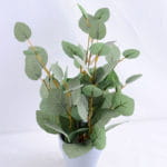 Artificial Plant 22*22*37cm leaf in Paper pot GS-03319136