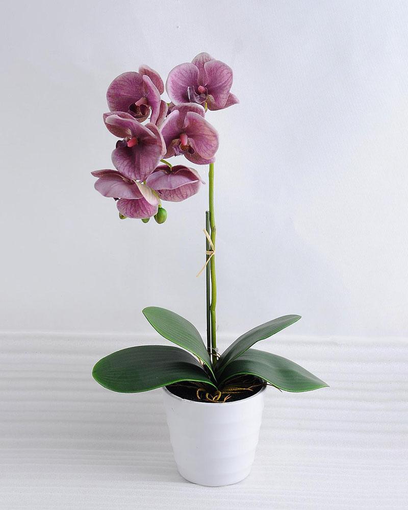 Artificial Orchid Flowers Silk Phalaenopsis Flower Arrangement