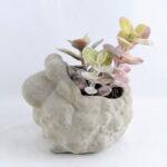 Artificial succulent 12*9*13CM Succulent in cement pot GS-30319011+P