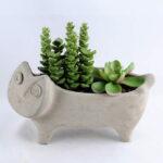 Artificial succulent 19*8.5*15CM Succulent in cement pot GS-30319017+P
