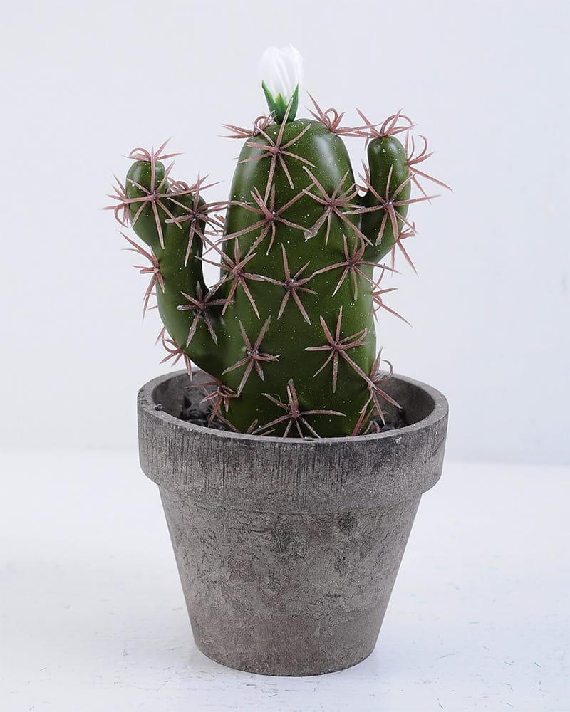 Artificial succulent 9.5*9.5*18CM Cactus In Paper Pot GS-38919030