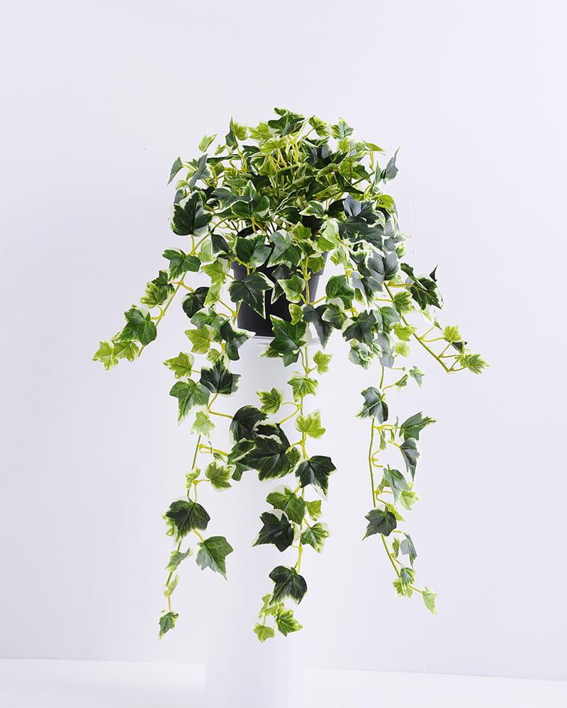 Artificial Plant H:37*29*38CM Ivy garland in plastic pot GS-0338958P4P48-G2