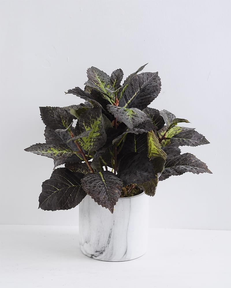 Artificial Plant 30*30*34cm Leaf in  Cement pot GS-03319393