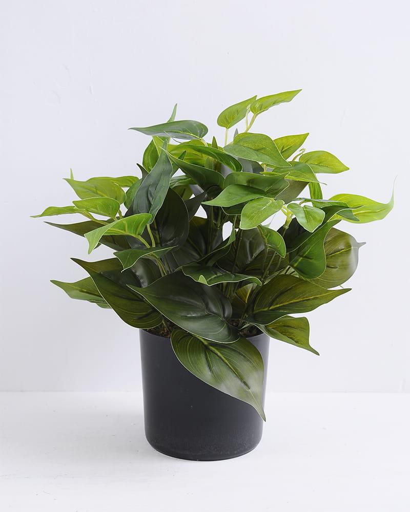 Artificial Plant 30*30*34cm Leaf in plastic pot GS-03319384