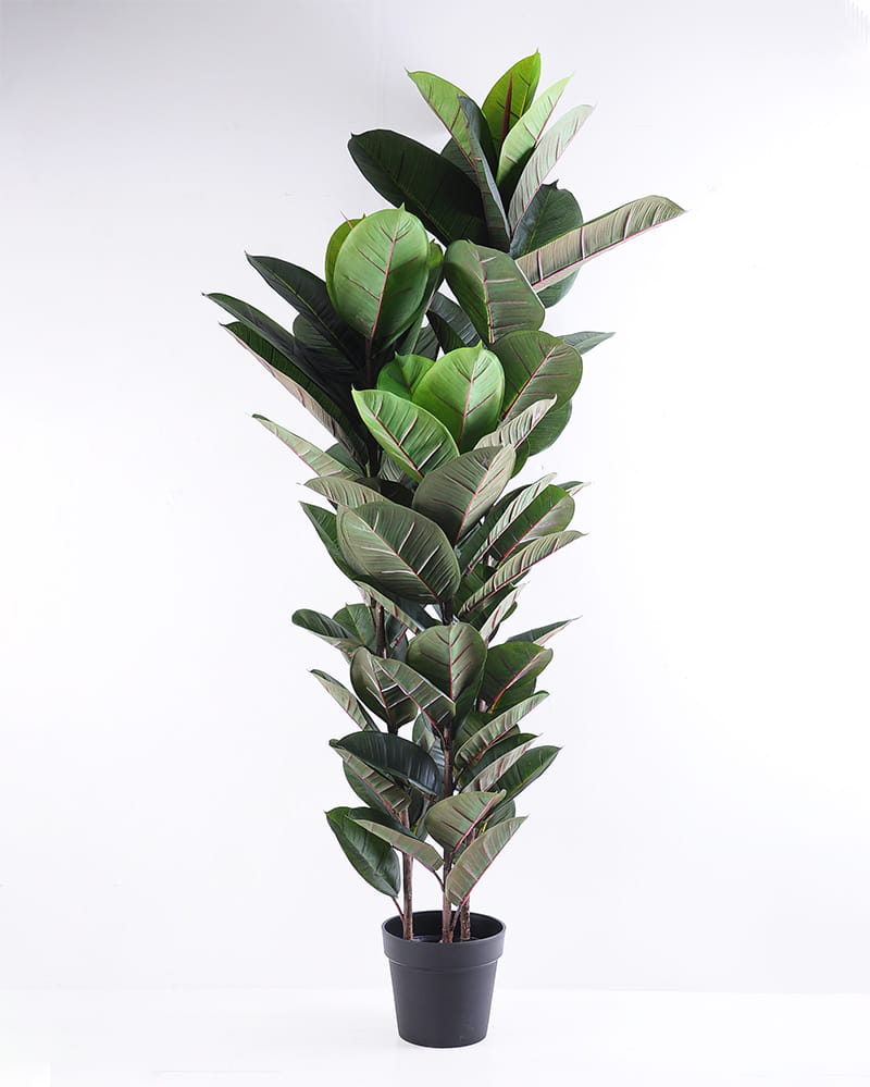 Artificial Tree 67*60*154CM Rubber wood tree in plastic pot/lvs81 GS-35319023